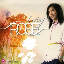 Living ROSE 2011 โรส ศิรินทิพย์