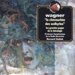 L'Anneau Du Nibelung-Highlights 2003 Bernard Haitink