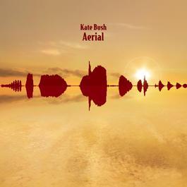 Aerial 2007 Kate Bush