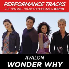 Wonder Why (Performance Tracks) - EP 2009 Avalon
