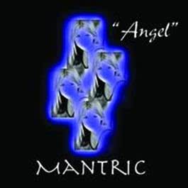 Angel 2008 Mantric