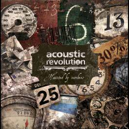 Haunted by Numbers 2012 Acoustic Revolution