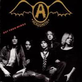 展翅高飛 2011 Aerosmith