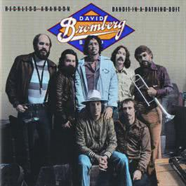 Reckless Abandon / Bandit In A Bathing Suit 2008 David Bromberg