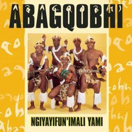 Ngiyayifunimali 2010 Abagqobhi