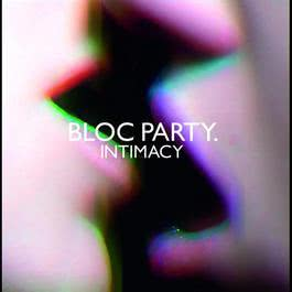 Intimacy 2009 Bloc Party