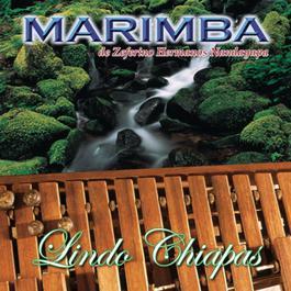 Lindo Chiapas 2003 Marimba de Zeferino Hermanos Nandayapa