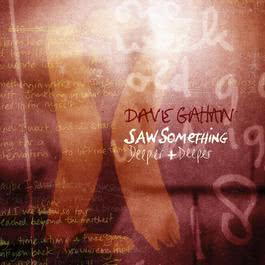 Saw Something 2008 Dave Gahan