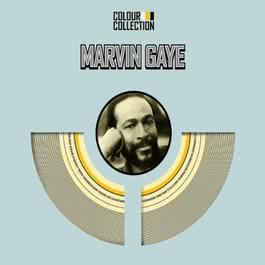 Colour Collection 2007 Marvin Gaye