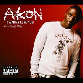 I Wanna Love You 2007 Akon