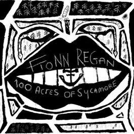 100 Acres Of Sycamore 2011 Fionn Regan