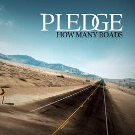 How Many Roads 2012 Pledge