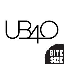 Bite Size UB40 2007 UB40