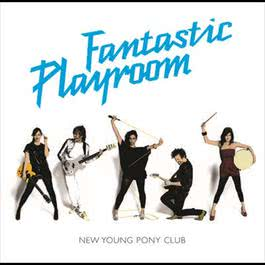 Fantastic Playroom 2007 New Young Pony Club