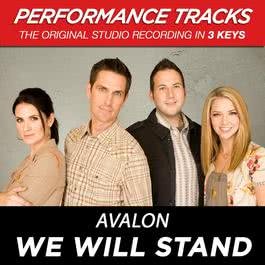 We Will Stand (Performance Tracks) - EP 2009 Avalon