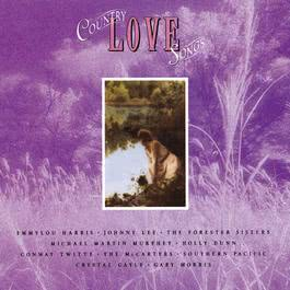 Country Love Songs 2009 Various Artists