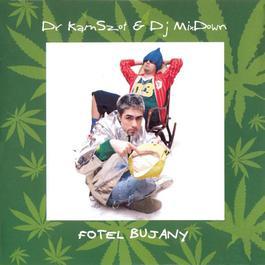 Fotel Bujany 2004 Dr KamSzot