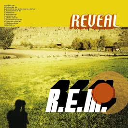 Beachball 2004 R.E.M.
