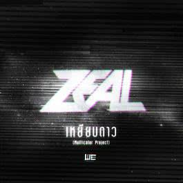 MULTICOLOR PROJECT 2014 Zeal
