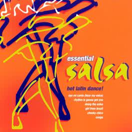 Essential Salsa 2003 Chico Arnez