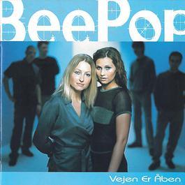 Vejen Er Åben 2011 Beepop