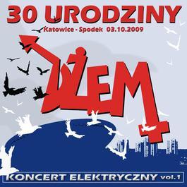 30. Urodziny. Koncert Elektryczny Vol. 1 2010 DEM
