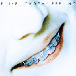 Groovy Feeling 2010 Fluke