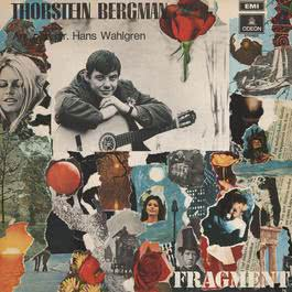Fragment 2012 Thorstein Bergman