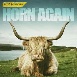HORN AGAIN 2011 the pillows