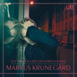 Lev som en gris dö som en hund 2010 Markus Krunegard