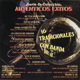 Ser. de Col. Aut. Exts. 16 Tradicionales Con Banda Vol. II 2003 Various Artists
