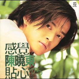 感覺貼心 1998 陳曉東