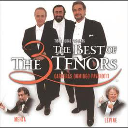 The Three Tenors - The Best of the 3 Tenors 2002 群星