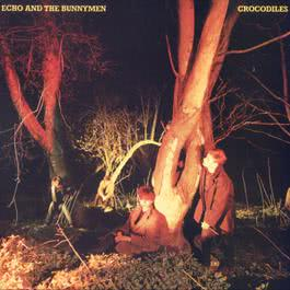 Crocodiles (Album Version) 1980 Echo & The Bunnymen
