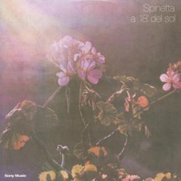 A 18' Del Sol 2003 Spinetta