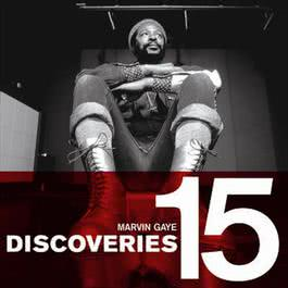 Discoveries 2008 Marvin Gaye