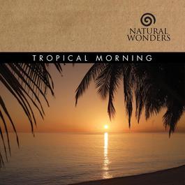 Tropical Morning 2008 David Arkenstone