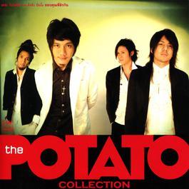 ขอบคุณที่รักกัน Acoustic Version 2006 Potato