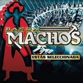 Mis Favoritas 2012 Banda Machos