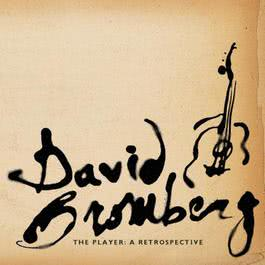 The Player: A Retrospective 1998 David Bromberg