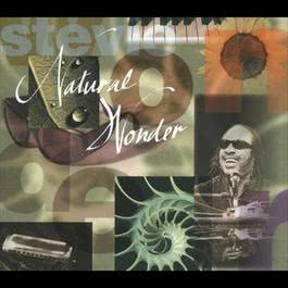 Natural Wonder 1995 Stevie Wonder