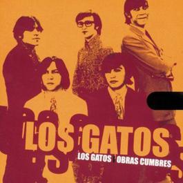 Obras Cumbres 2007 Los Gatos