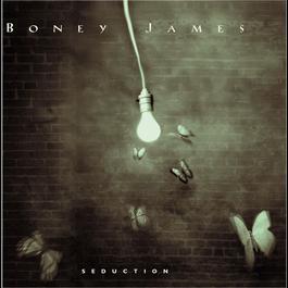 Seduction 2009 Boney James