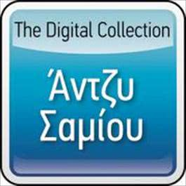 The Digital Collection 2008 Angie Samiou