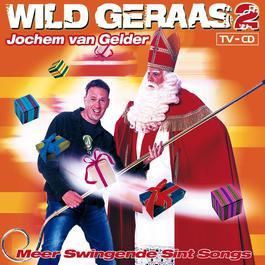 Amerigo 2004 Jochem van Gelder