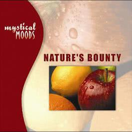 Mystical Moods: Nature's Bounty 2009 羣星