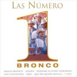 Las Numero 1 De Bronco 2012 Bronco