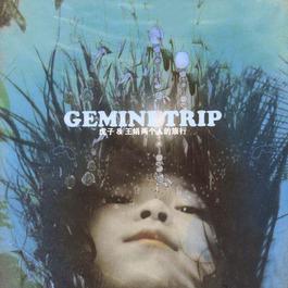 Gemini Trip 2005 虎子; 王娟