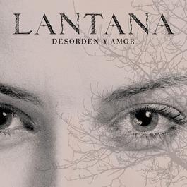 Desorden y Amor 2007 Lantana