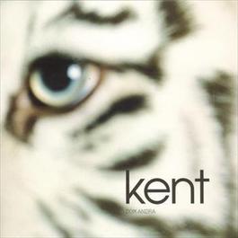 Dom Andra 2010 Kent
